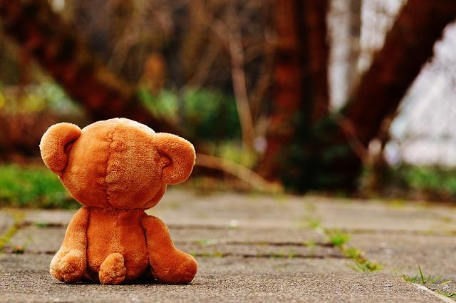 bear-1272799_640