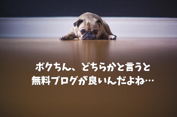 top-blog2